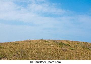 gramado, outono