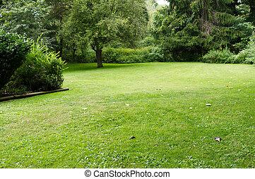 gramado, quieto, árvores