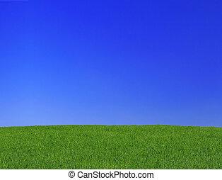 gramado, s, calmo
