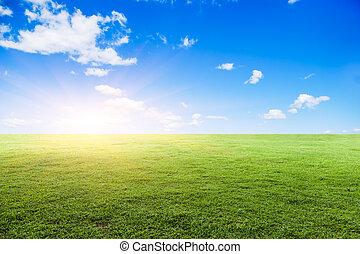 gramado, sob, a, céu azul