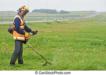 gramado, trabalhador, mower