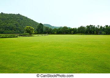 gramados, paisagem montanha, a, beleza, de, natureza