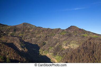 Gran Canaria, December