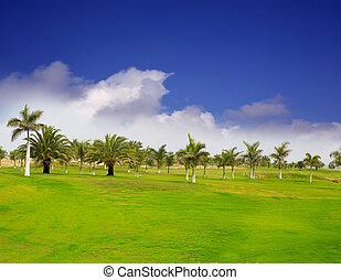 gran canaria, meloneras, golfowa zieleń, trawa