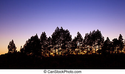Gran Canaria,  sunset in Las Cumbres