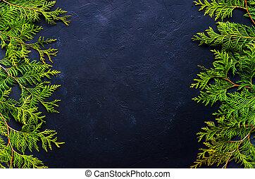 gran, grenverk, bakgrund., träd, above., svart, jul, synhåll