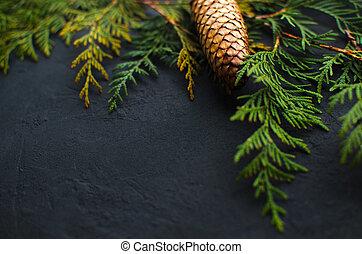 gran, grenverk, käglor, bakgrund., träd, above., svart, jul, synhåll
