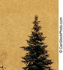 gran, grunge, träd