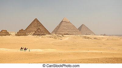 gran pirámide, camello