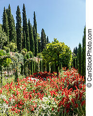 granada, alhambra, generalife, giardini, spagna, vista
