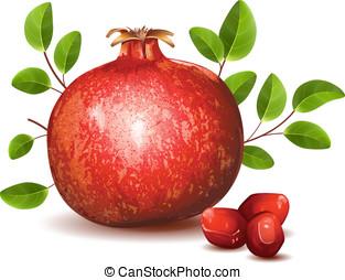 granada, con, hojas