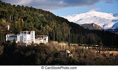 Granada with Sierra Nevada, Spain - Forest in Granada with...