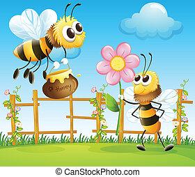 grand, abeilles, jardin, deux