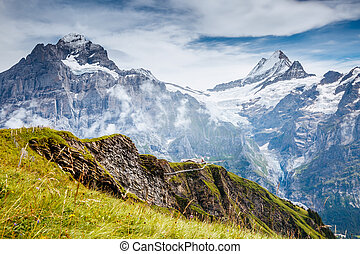 grand, alpes, grindelwald, hill., endroit, emplacement, suisse, alpin, valley., vue