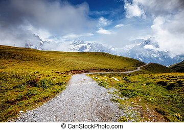grand, alpes, lueurs, alpin, grindelwald, endroit, emplacement, suisse, vallée, valley., sunlight.