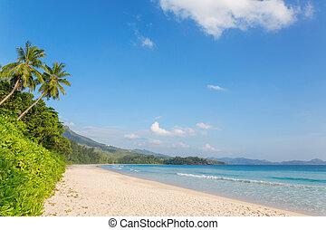 grand', anse, praia, ligado, ilha mahe, seychelles