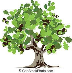 grand, arbre chêne, vecteur, vert, illustrat
