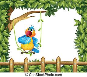 grand arbre, perroquet, coloré, sous