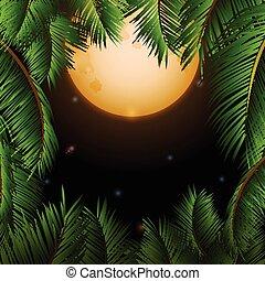 grand, arbres, lune, exotique, paume, fond