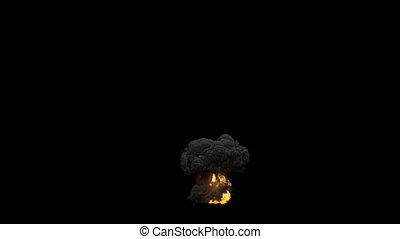 grand, brûler, échelle, fumée