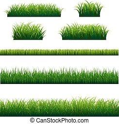 grand, cadre, herbe, vert, ensemble