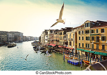Grand canal, view from Rialto bridge