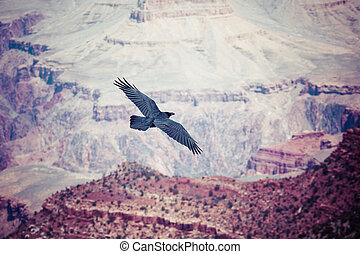 Grand Canyon National Park, Arizoan, USA