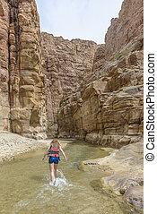 Grand Canyon of Jordan, Wadi al mujib Natural Reserve - The ...