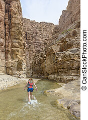 Grand Canyon of Jordan,Wadi al mujib Natural Reserve - The...