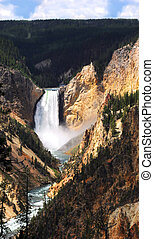 Grand Canyon of the Yellowstone with Lower Falls