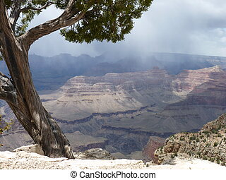 Grand Canyon on a Stormy Day