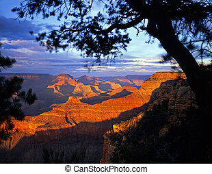 The Grand Canyon, in Grand Canyon National Park Arizona, photographed from the South Rim in the late afternoon.