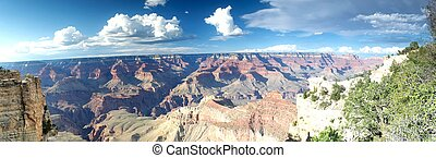 grand canyon - panoramic view of grand canyon