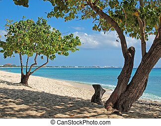 Tropical beach on Grand Cayman in the Cayman Islands.