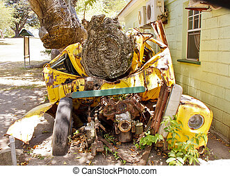 grand, coffre, arbre, écrasé, schoolbus