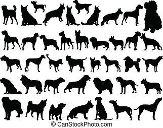 grand, collection, de, chiens, -, vecteur