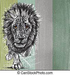 grand, croquis, lion mâle, africaine