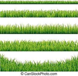 grand, ensemble, herbe, vert