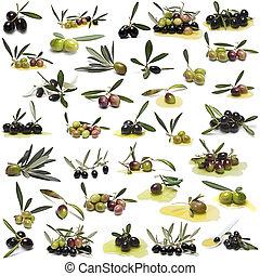 grand, ensemble, sur, olives, arrière-plan., blanc