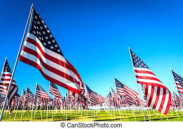 grand, exposer, américain, commémoratif, vétérans, groupe, flags., jour, ou