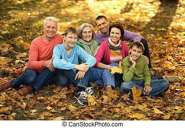 grand, famille, promenade