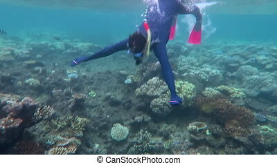 grand, femme, snorkeling, barrière, récif