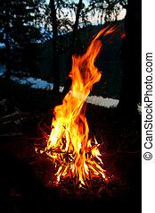 grand, flamme, feu