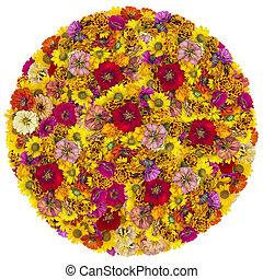 grand, fleurs, balle, été
