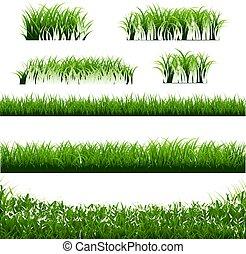 grand, frontières, herbe, vert, ensemble