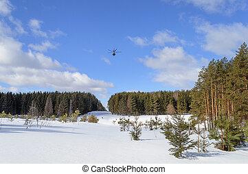 grand, hélicoptère, sur, forêt, clairière