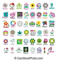 grand, logos, vecteur, floral, collection
