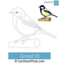 grand, mésange, dessiner, vecteur, apprendre, oiseau