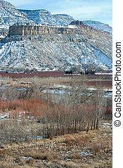 Palisade, Colorado