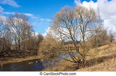 grand, nuages, rivière, ciel, arbre, printemps, bleu, enduisage, river., sur, beau, rural